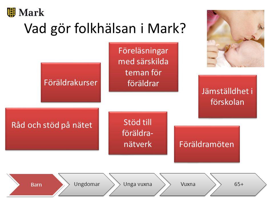 UngdomarUnga vuxnaVuxna65+ Vad gör folkhälsan i Mark? Föreläsningar med särskilda teman för föräldrar Föräldrakurser Stöd till föräldra- nätverk Råd o