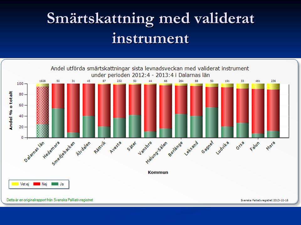 Smärtskattning med validerat instrument
