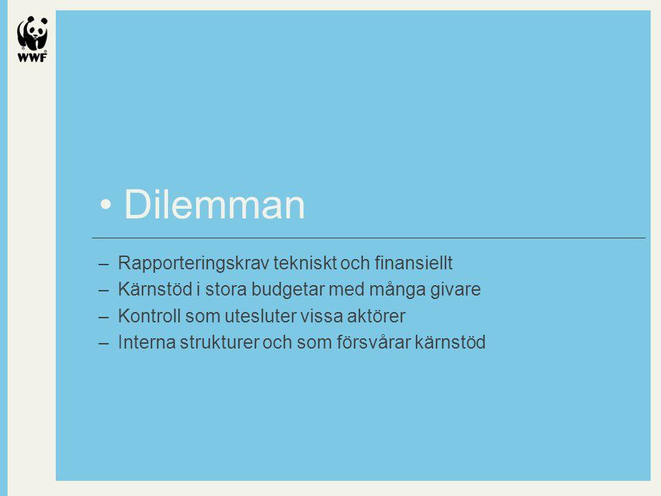 Dilemman –Rapporteringskrav tekniskt och finansiellt –Kärnstöd i stora budgetar med många givare –Kontroll som utesluter vissa aktörer –Interna strukturer och som försvårar kärnstöd