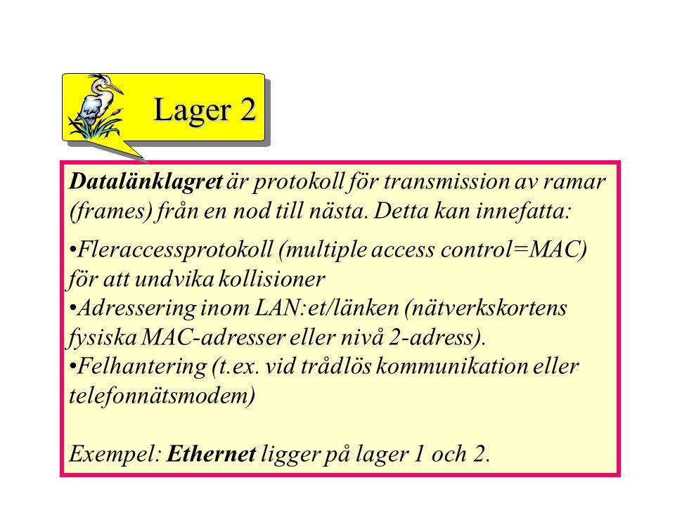 Datalänklagret är protokoll för transmission av ramar (frames) från en nod till nästa. Detta kan innefatta: Fleraccessprotokoll (multiple access contr