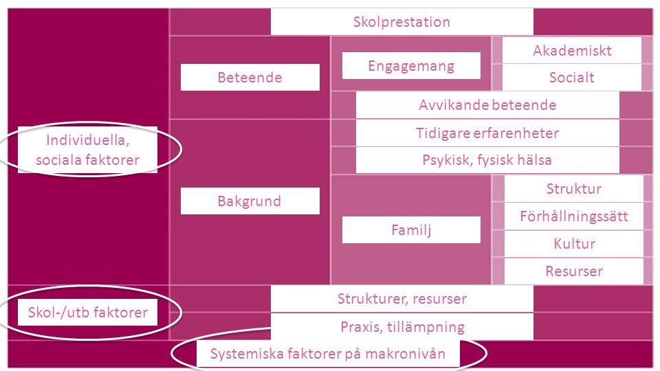 Systemiska faktorer på makronivån Praxis, tillämpning Strukturer, resurser Skol-/utb faktorer Individuella, sociala faktorer Beteende Bakgrund Skolpre