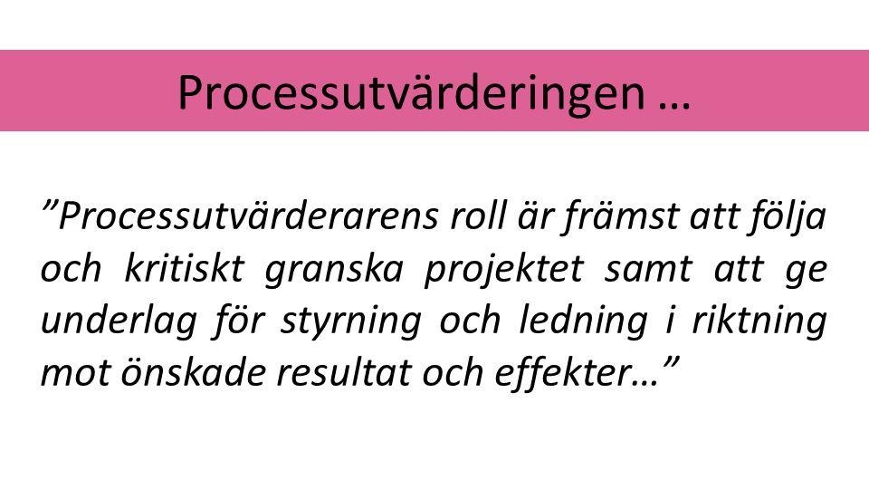 """Processutvärderingen … """"Processutvärderarens roll är främst att följa och kritiskt granska projektet samt att ge underlag för styrning och ledning i r"""