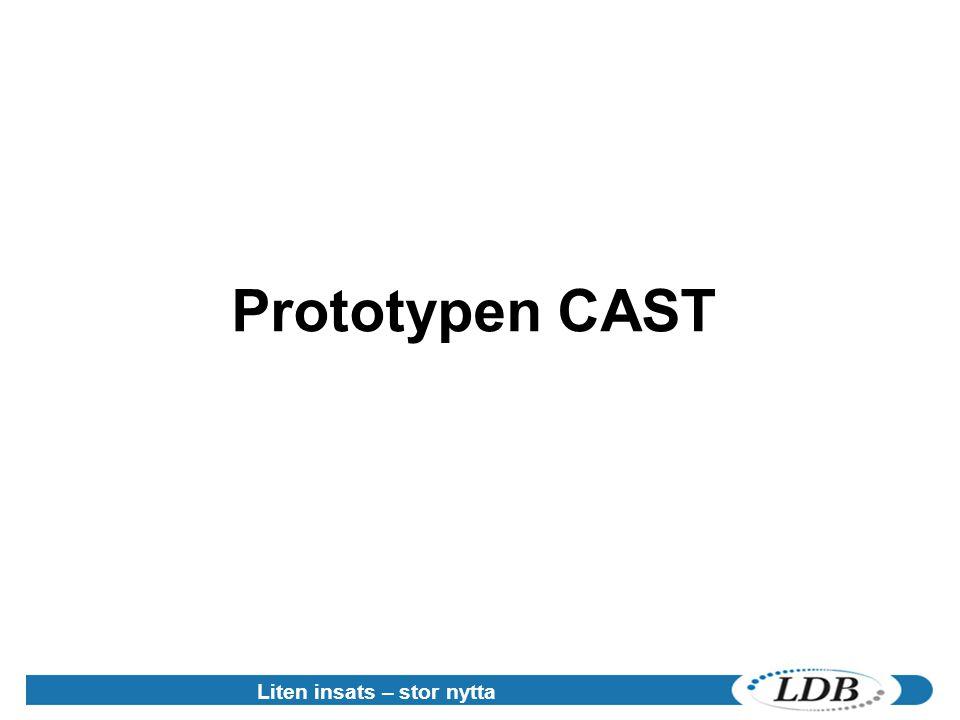 Prototypen CAST Liten insats – stor nytta