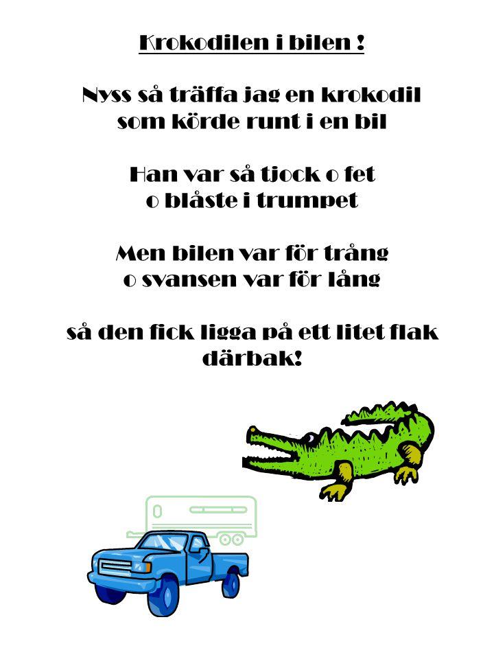 Krokodilen i bilen ! Nyss så träffa jag en krokodil som körde runt i en bil Han var så tjock o fet o blåste i trumpet Men bilen var för trång o svanse