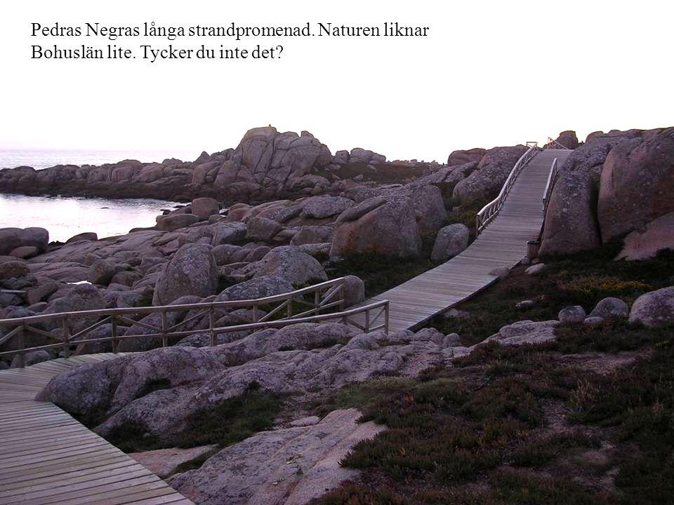 Pedras Negras långa strandpromenad. Naturen liknar Bohuslän lite. Tycker du inte det?
