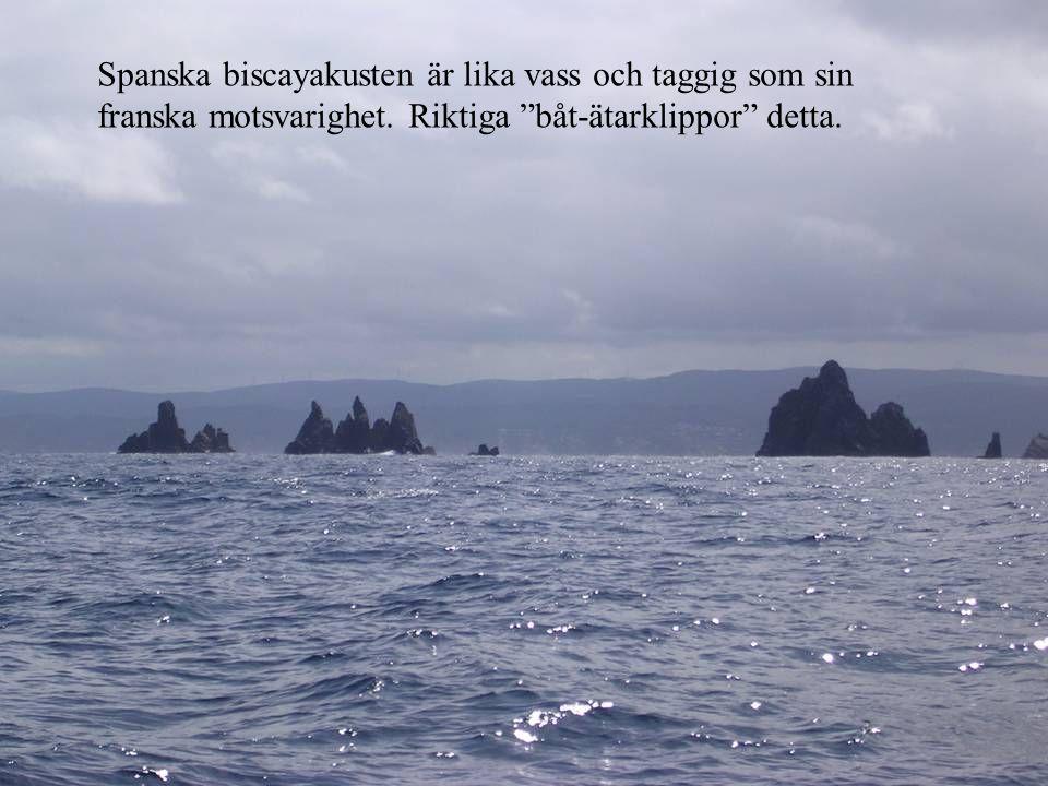 Isla Cies är en av mycket få öar längs Spanska atlantkusten.