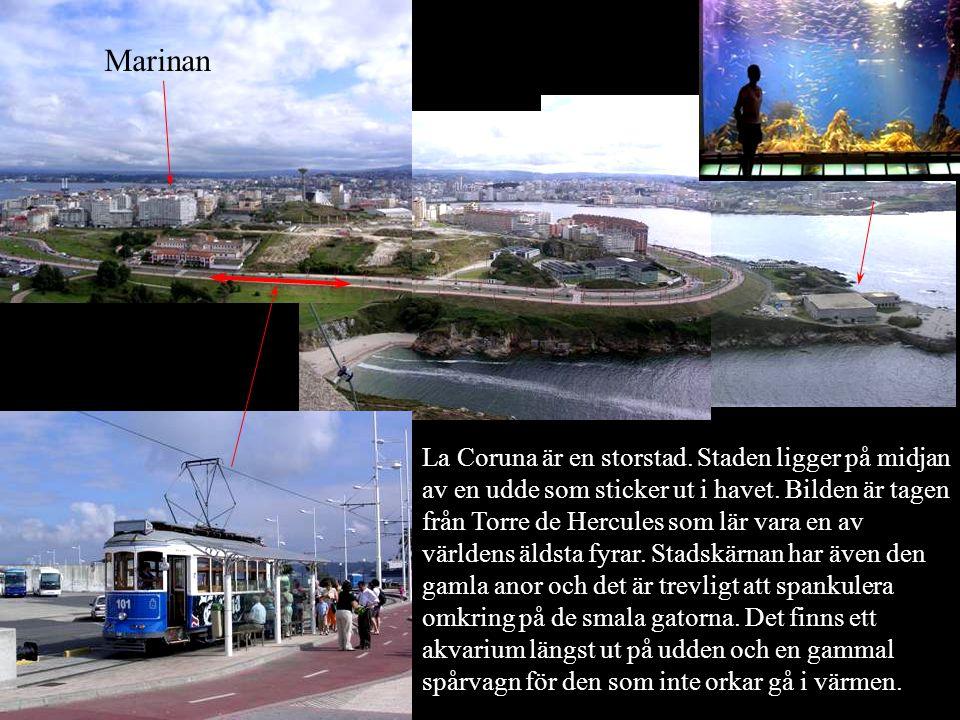 La Coruna är en storstad. Staden ligger på midjan av en udde som sticker ut i havet. Bilden är tagen från Torre de Hercules som lär vara en av världen