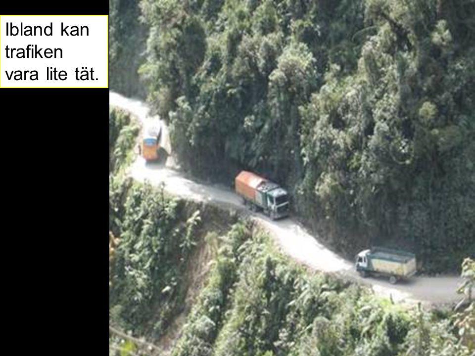 Ibland kan trafiken vara lite tät.