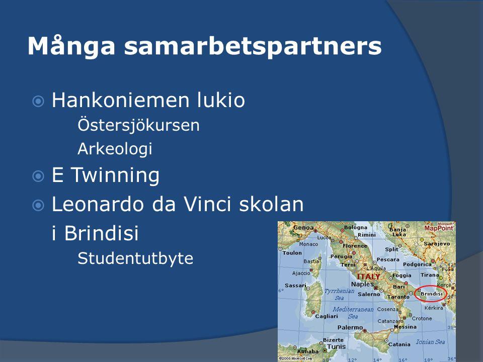 Många samarbetspartners  Hankoniemen lukio Östersjökursen Arkeologi  E Twinning  Leonardo da Vinci skolan i Brindisi Studentutbyte