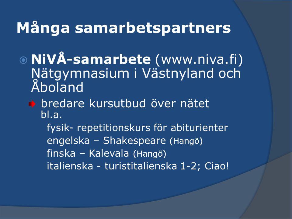 Många samarbetspartners  NiVÅ-samarbete (www.niva.fi) Nätgymnasium i Västnyland och Åboland bredare kursutbud över nätet bl.a. fysik- repetitionskurs