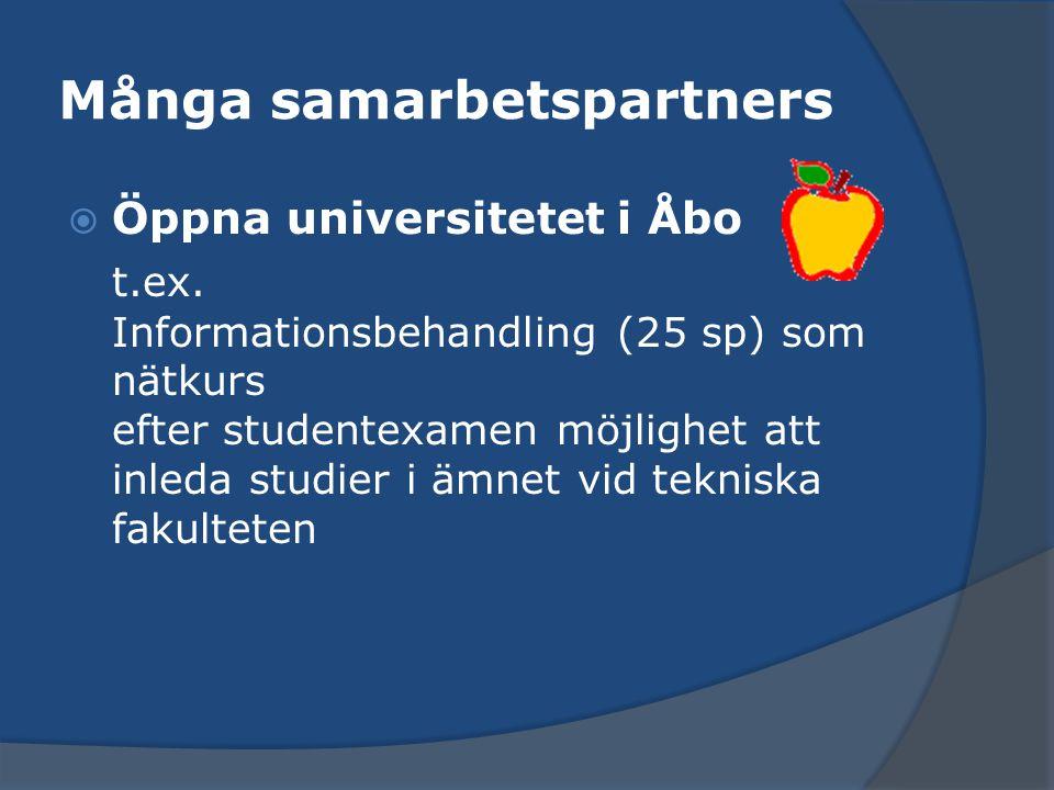 Många samarbetspartners  Öppna universitetet i Åbo t.ex. Informationsbehandling (25 sp) som nätkurs efter studentexamen möjlighet att inleda studier