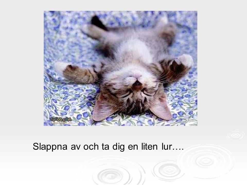 Slappna av och ta dig en liten lur….