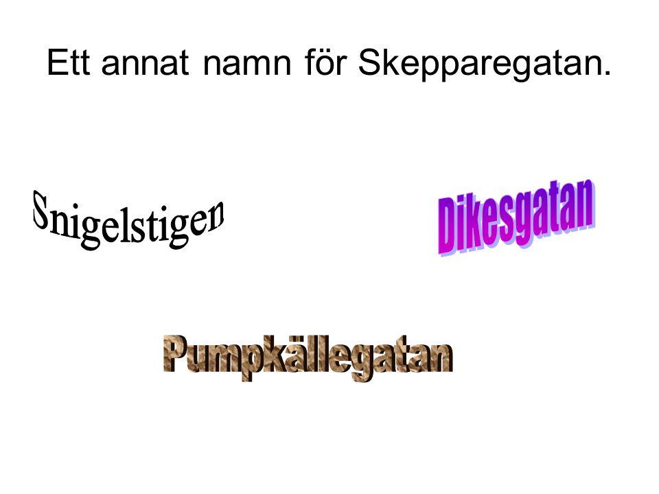 Ett annat namn för Skepparegatan.