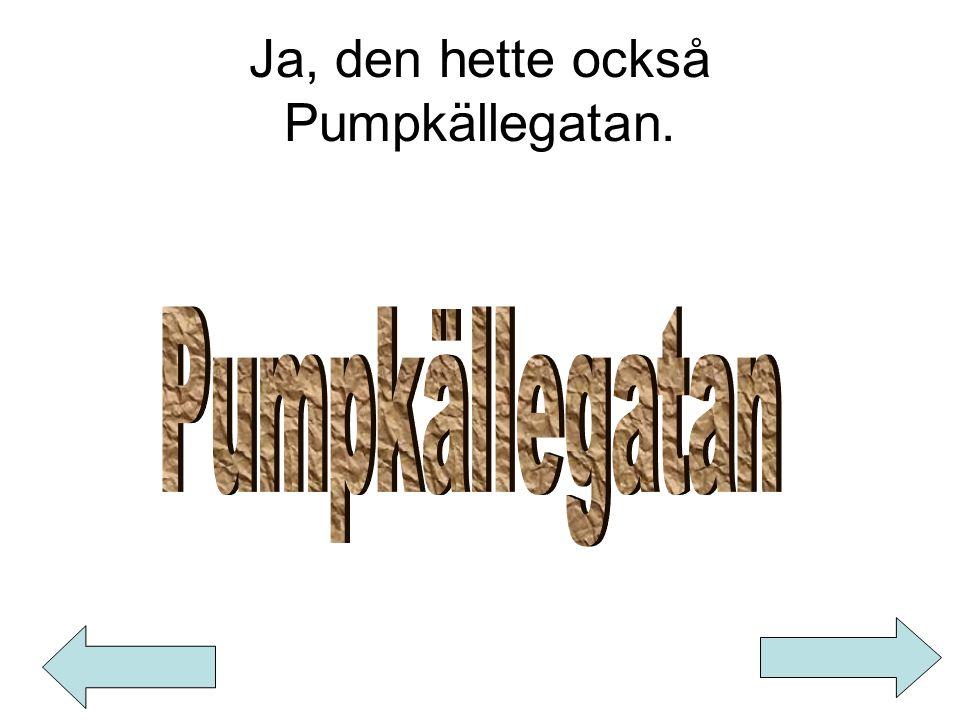 Ja, den hette också Pumpkällegatan.
