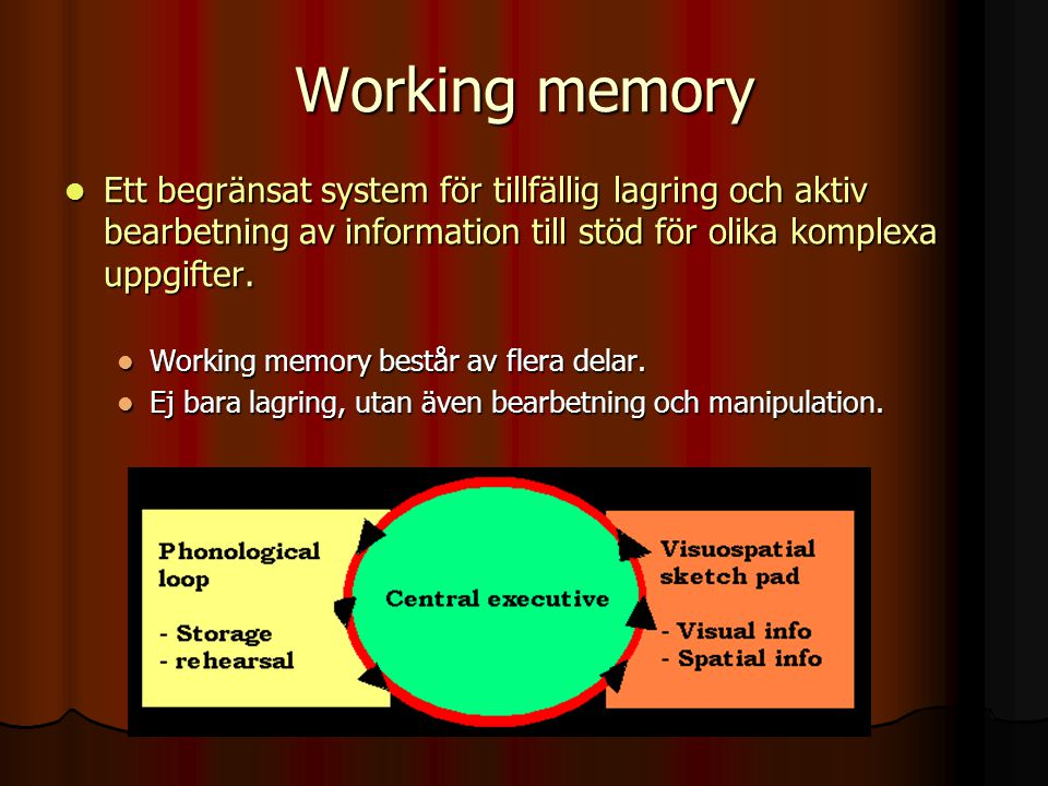 Working memory Ett begränsat system för tillfällig lagring och aktiv bearbetning av information till stöd för olika komplexa uppgifter. Ett begränsat