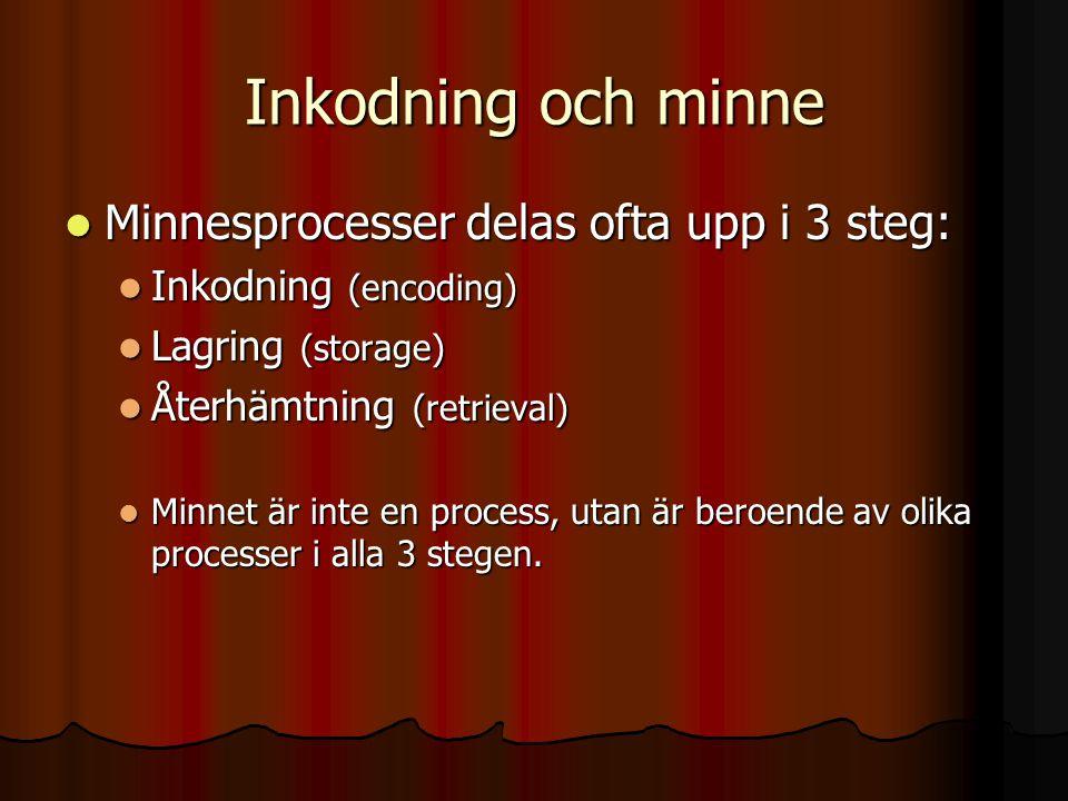 Inkodning och minne Minnesprocesser delas ofta upp i 3 steg: Minnesprocesser delas ofta upp i 3 steg: Inkodning (encoding) Inkodning (encoding) Lagrin