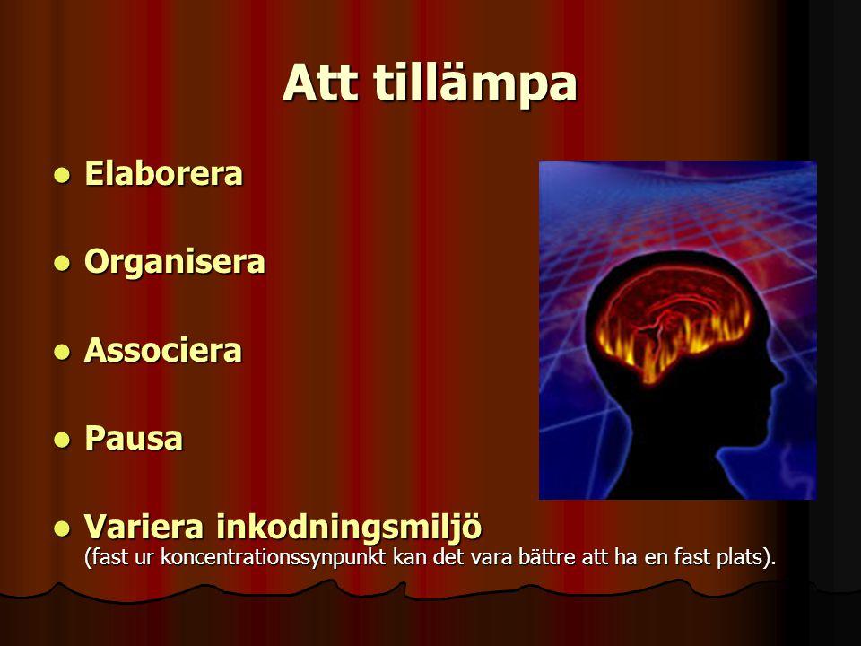 Att tillämpa Elaborera Elaborera Organisera Organisera Associera Associera Pausa Pausa Variera inkodningsmiljö (fast ur koncentrationssynpunkt kan det