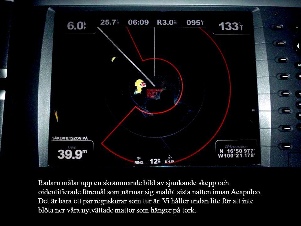 650 Nm till Acapulco. Det är bara att hissa segel och sätta kurs österut. Idag har vi en fripassagerare i masttoppen. En sula. Radarn målar upp en skr