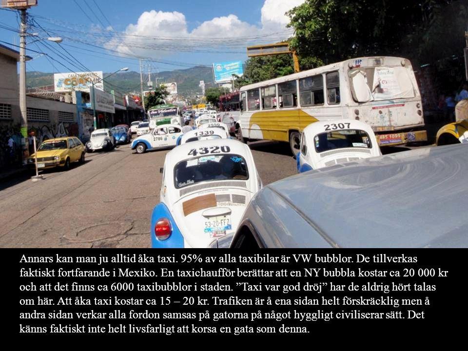 Annars kan man ju alltid åka taxi. 95% av alla taxibilar är VW bubblor. De tillverkas faktiskt fortfarande i Mexiko. En taxichaufför berättar att en N