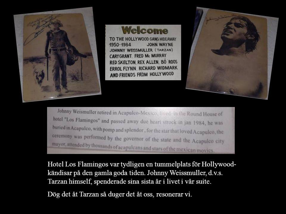 Hotel Los Flamingos var tydligen en tummelplats för Hollywood- kändisar på den gamla goda tiden. Johnny Weissmuller, d.v.s. Tarzan himself, spenderade