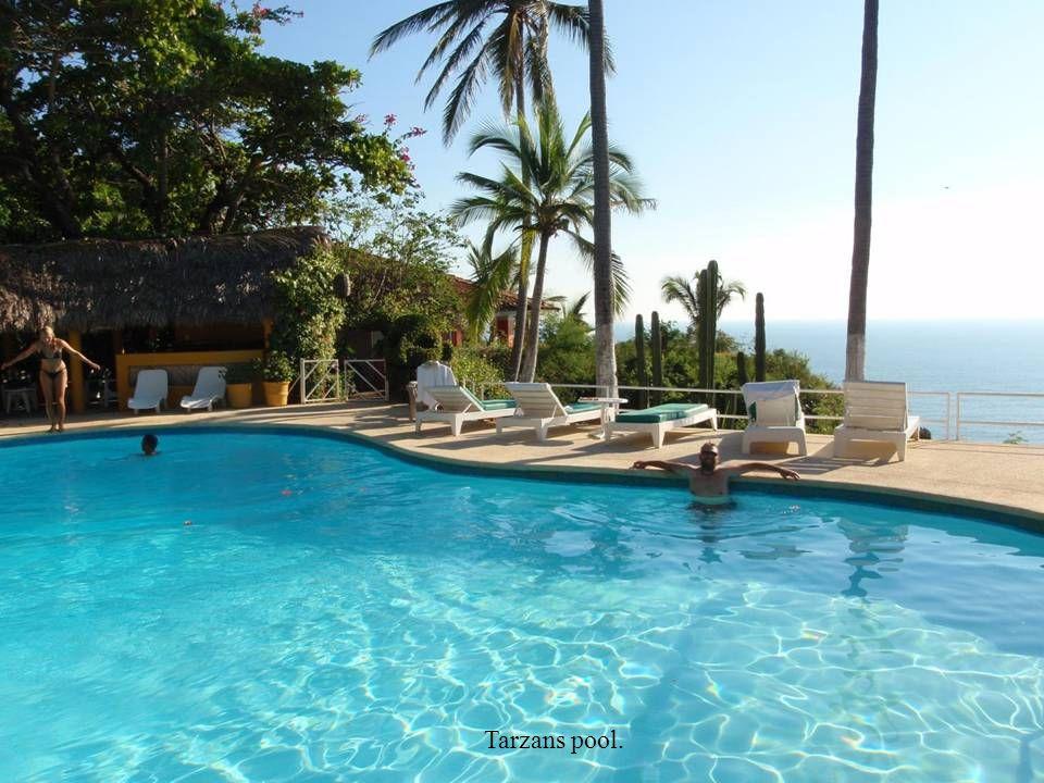 I Tarzans pool flyter det runt nyplockade hibiskusblommor varje morgon.