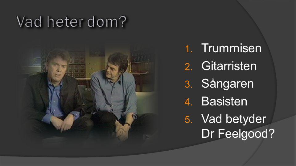 1. Trummisen 2. Gitarristen 3. Sångaren 4. Basisten 5. Vad betyder Dr Feelgood?