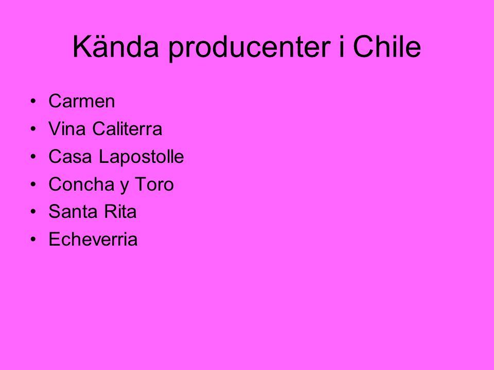 Kända producenter i Chile Carmen Vina Caliterra Casa Lapostolle Concha y Toro Santa Rita Echeverria