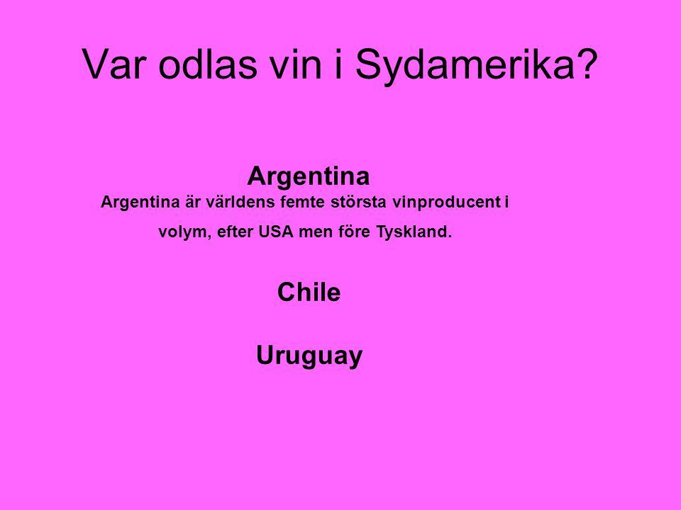 Var odlas vin i Sydamerika? Argentina Argentina är världens femte största vinproducent i volym, efter USA men före Tyskland. Chile Uruguay