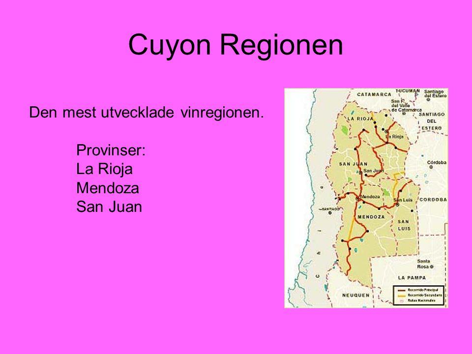 Cuyon Regionen Den mest utvecklade vinregionen. Provinser: La Rioja Mendoza San Juan