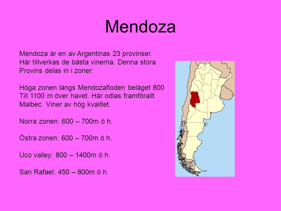Mendoza Mendoza är en av Argentinas 23 provinser. Här tillverkas de bästa vinerna. Denna stora Provins delas in i zoner: Höga zonen längs Mendozaflode