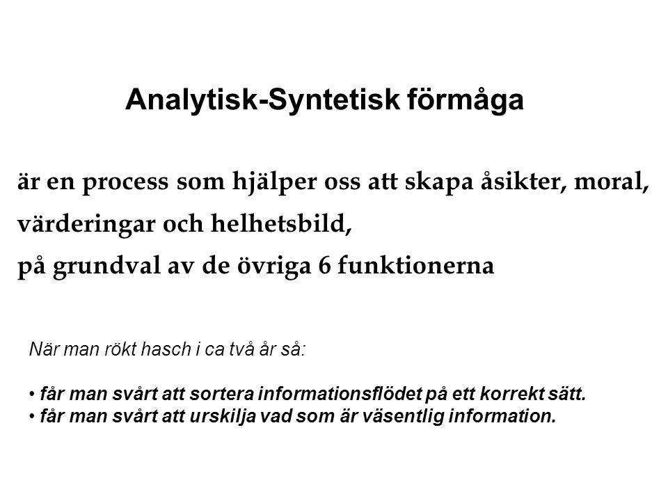 Analytisk-Syntetisk förmåga är en process som hjälper oss att skapa åsikter, moral, värderingar och helhetsbild, på grundval av de övriga 6 funktioner