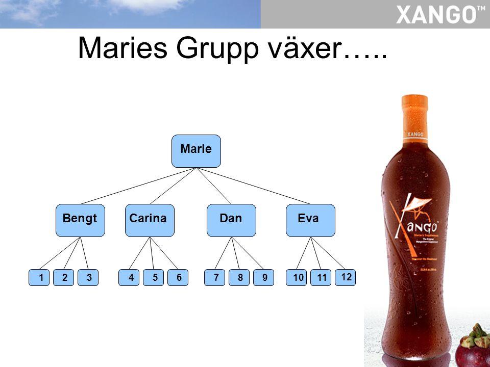 Maries Grupp växer….. Marie BengtCarinaDanEva 1 2 3 4 5 6 7 8 9 10 11 12