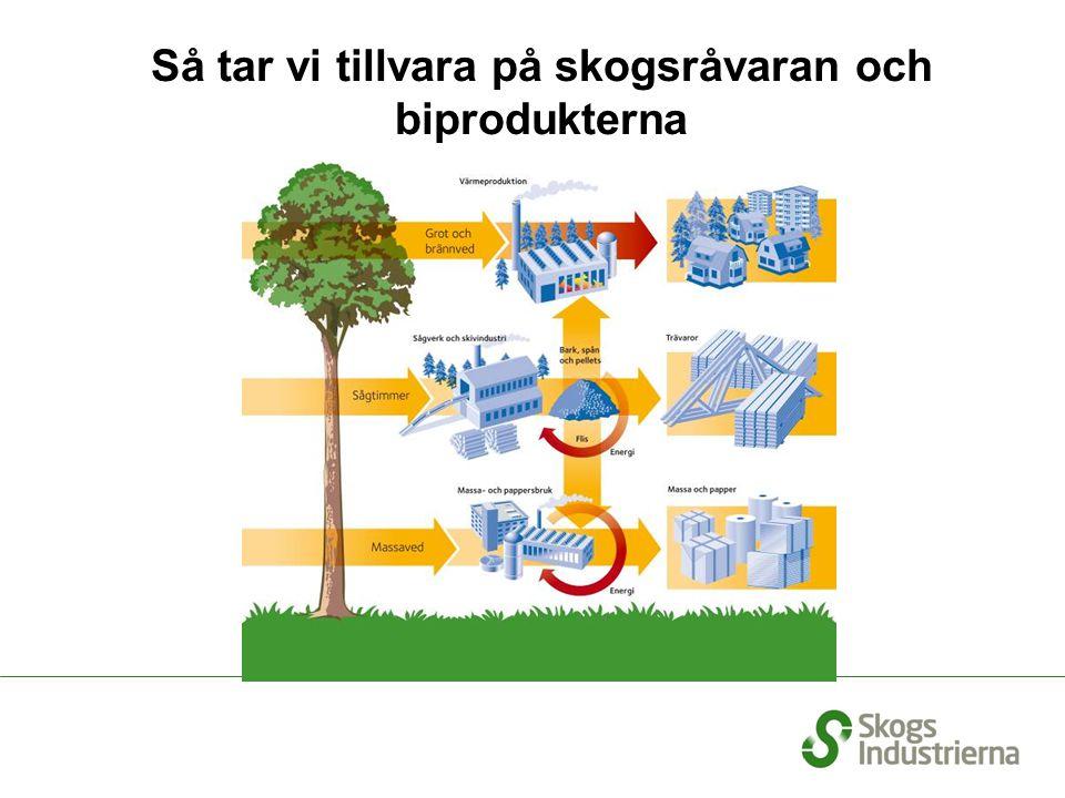 Central betydelse för regional utveckling och arbetsmarknad 20-30% av direkt sysselsatta i länens industri 20-50% av industrins produktionsvärde i länen 20-40% av industrins förädlingsvärde i länen I län med avfolknings- och sysselsättnings- svårigheter är skogsindustrin en ledande industrigren Redovisade siffror gäller för orangemarkerade län Källa: SCB