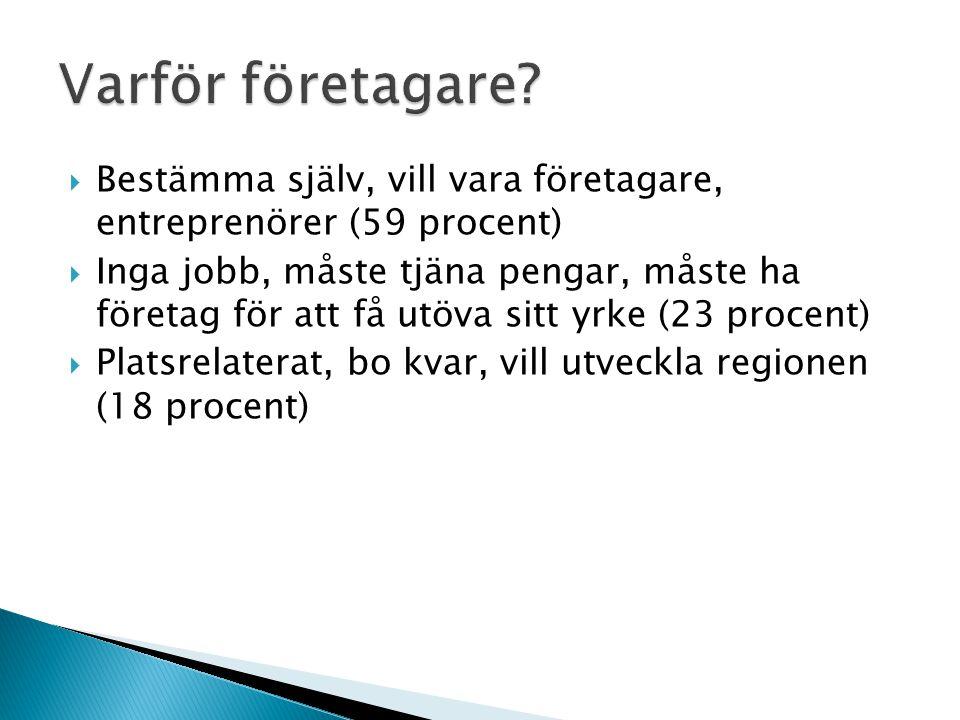  Bestämma själv, vill vara företagare, entreprenörer (59 procent)  Inga jobb, måste tjäna pengar, måste ha företag för att få utöva sitt yrke (23 pr
