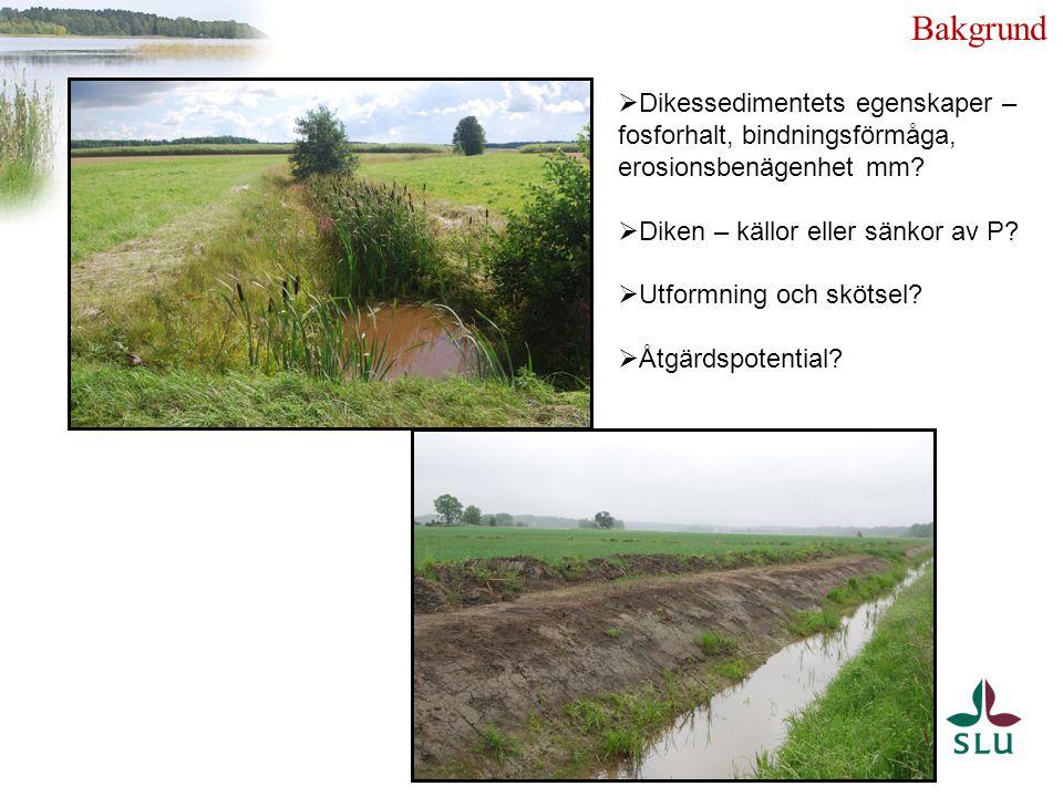  Hög rumslig variation i P-förlusterna  hot spots  Hög tidsmässig variation  Fosforhalt i diken och i omkringliggande fält  Samband fält – dike – vattenkvalitet.