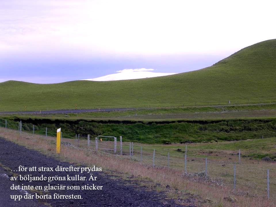 …för att strax därefter prydas av böljande gröna kullar. Är det inte en glaciär som sticker upp där borta förresten.