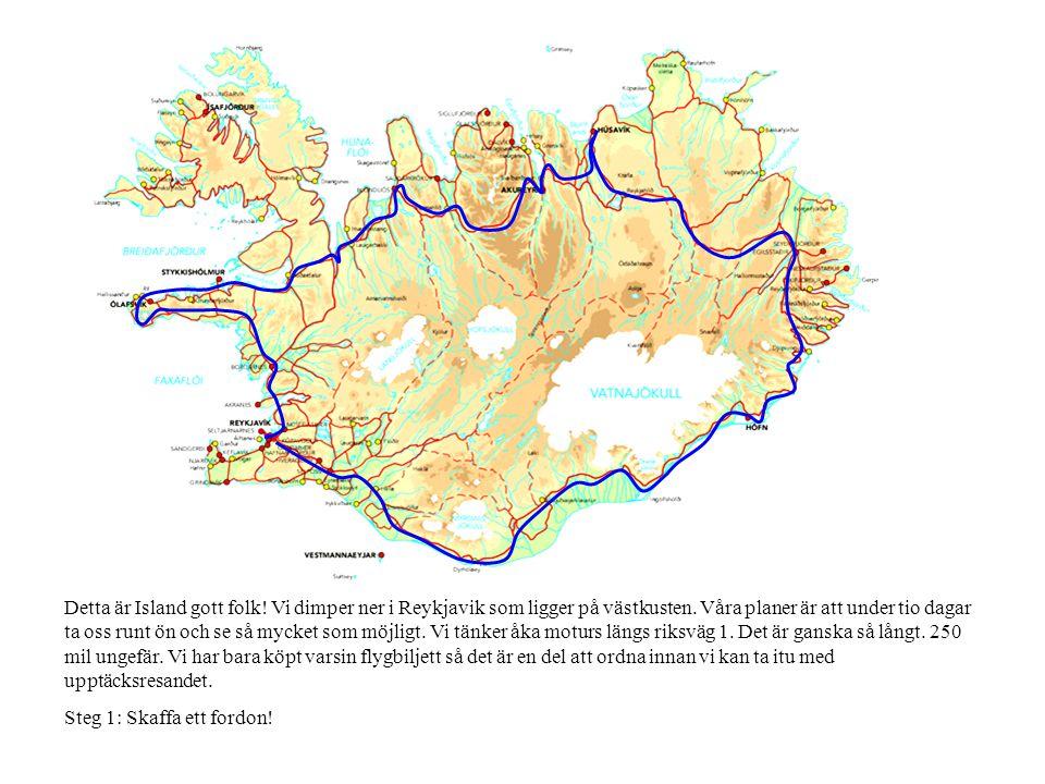 Detta är Island gott folk! Vi dimper ner i Reykjavik som ligger på västkusten. Våra planer är att under tio dagar ta oss runt ön och se så mycket som