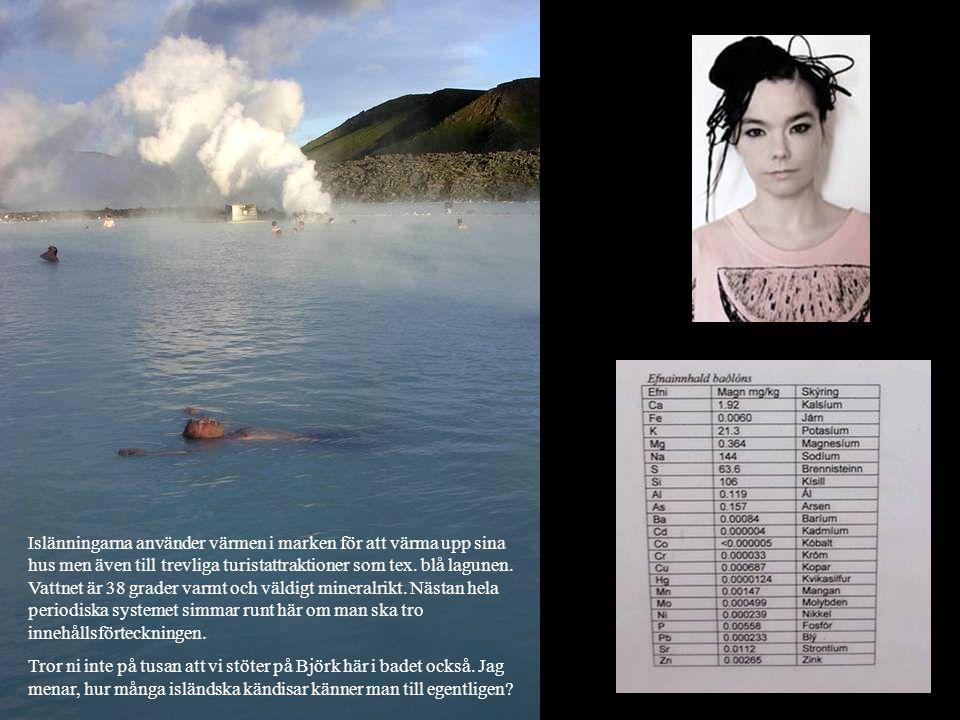 Islänningarna använder värmen i marken för att värma upp sina hus men även till trevliga turistattraktioner som tex. blå lagunen. Vattnet är 38 grader