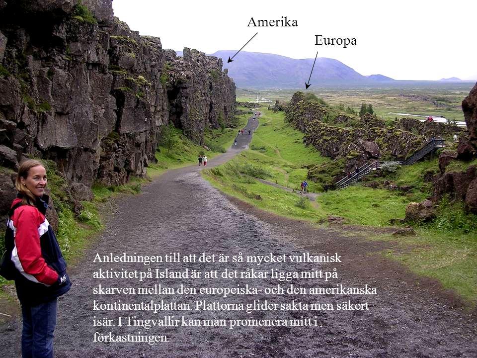 Anledningen till att det är så mycket vulkanisk aktivitet på Island är att det råkar ligga mitt på skarven mellan den europeiska- och den amerikanska