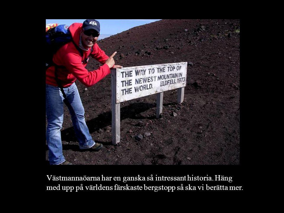 Västmannaöarna har en ganska så intressant historia. Häng med upp på världens färskaste bergstopp så ska vi berätta mer.