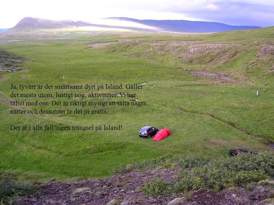 Ja, tyvärr är det smärtsamt dyrt på Island. Gäller det mesta utom, lustigt nog, aktiviteter. Vi har tältet med oss. Det är riktigt mysigt att tälta nå
