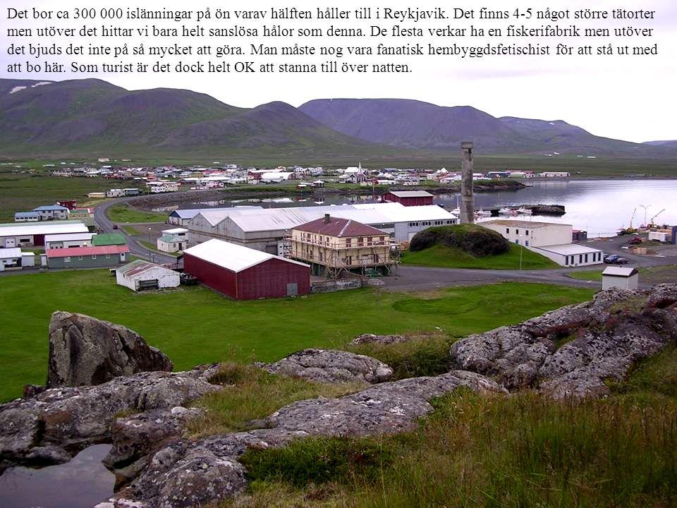 Det bor ca 300 000 islänningar på ön varav hälften håller till i Reykjavik. Det finns 4-5 något större tätorter men utöver det hittar vi bara helt san