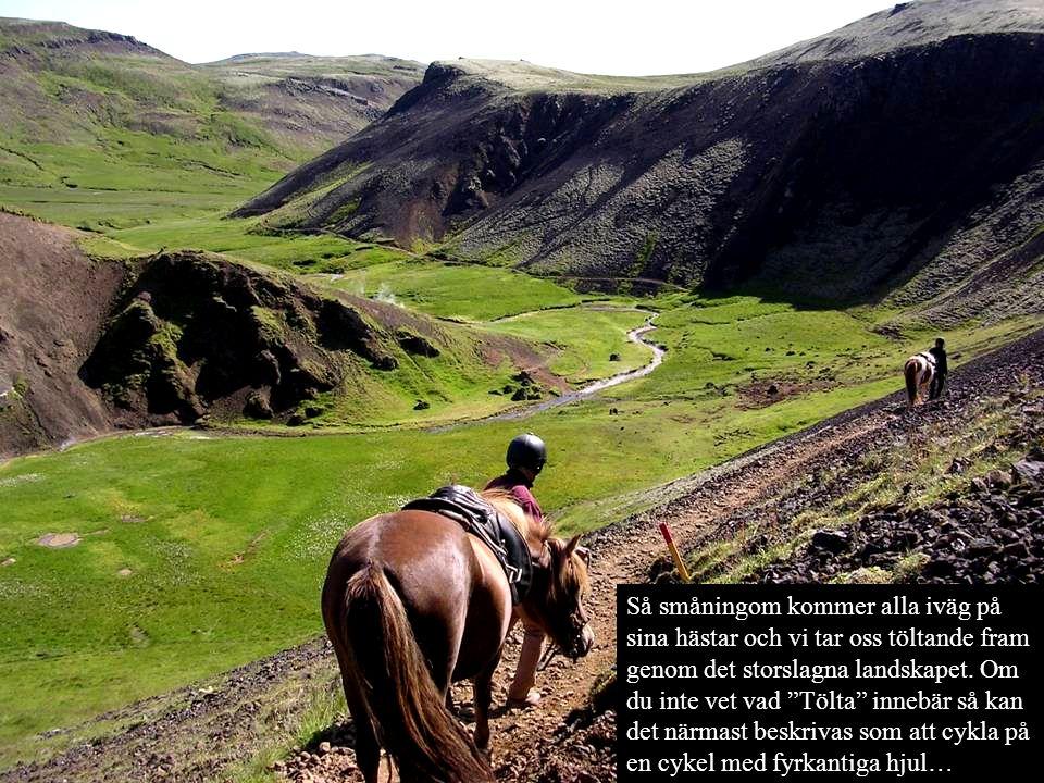 """Så småningom kommer alla iväg på sina hästar och vi tar oss töltande fram genom det storslagna landskapet. Om du inte vet vad """"Tölta"""" innebär så kan d"""