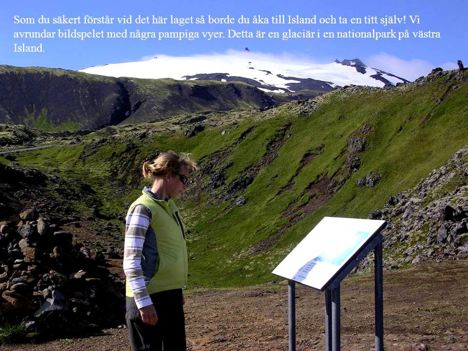 Som du säkert förstår vid det här laget så borde du åka till Island och ta en titt själv! Vi avrundar bildspelet med några pampiga vyer. Detta är en g