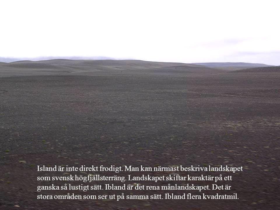 Island är inte direkt frodigt. Man kan närmast beskriva landskapet som svensk högfjällsterräng. Landskapet skiftar karaktär på ett ganska så lustigt s