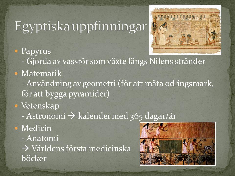 Papyrus - Gjorda av vassrör som växte längs Nilens stränder Matematik - Användning av geometri (för att mäta odlingsmark, för att bygga pyramider) Vetenskap - Astronomi  kalender med 365 dagar/år Medicin - Anatomi  Världens första medicinska böcker
