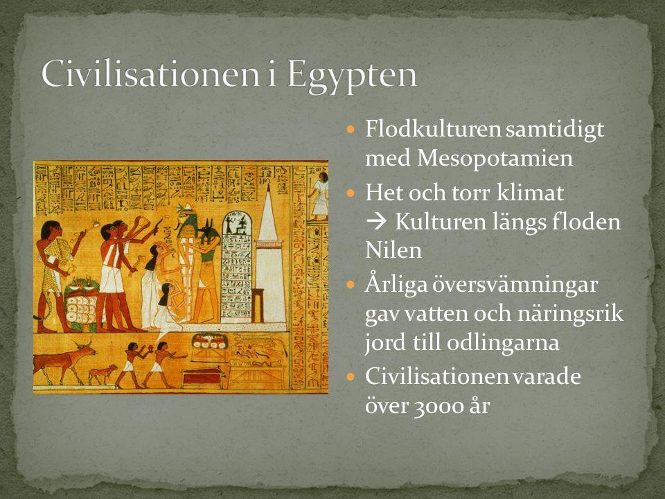 Flodkulturen samtidigt med Mesopotamien Het och torr klimat  Kulturen längs floden Nilen Årliga översvämningar gav vatten och näringsrik jord till odlingarna Civilisationen varade över 3000 år