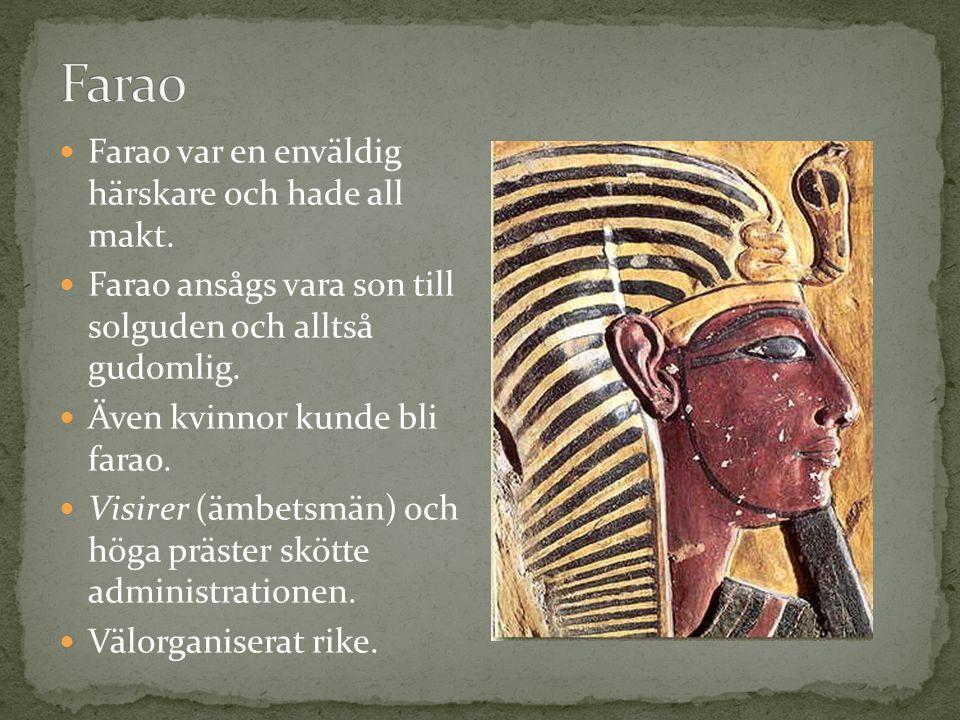 Farao var en enväldig härskare och hade all makt. Farao ansågs vara son till solguden och alltså gudomlig. Även kvinnor kunde bli farao. Visirer (ämbe