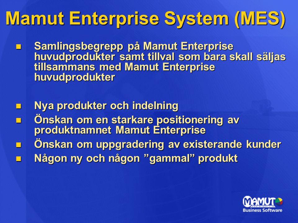 Mamut Enterprise System (MES) Samlingsbegrepp på Mamut Enterprise huvudprodukter samt tillval som bara skall säljas tillsammans med Mamut Enterprise h