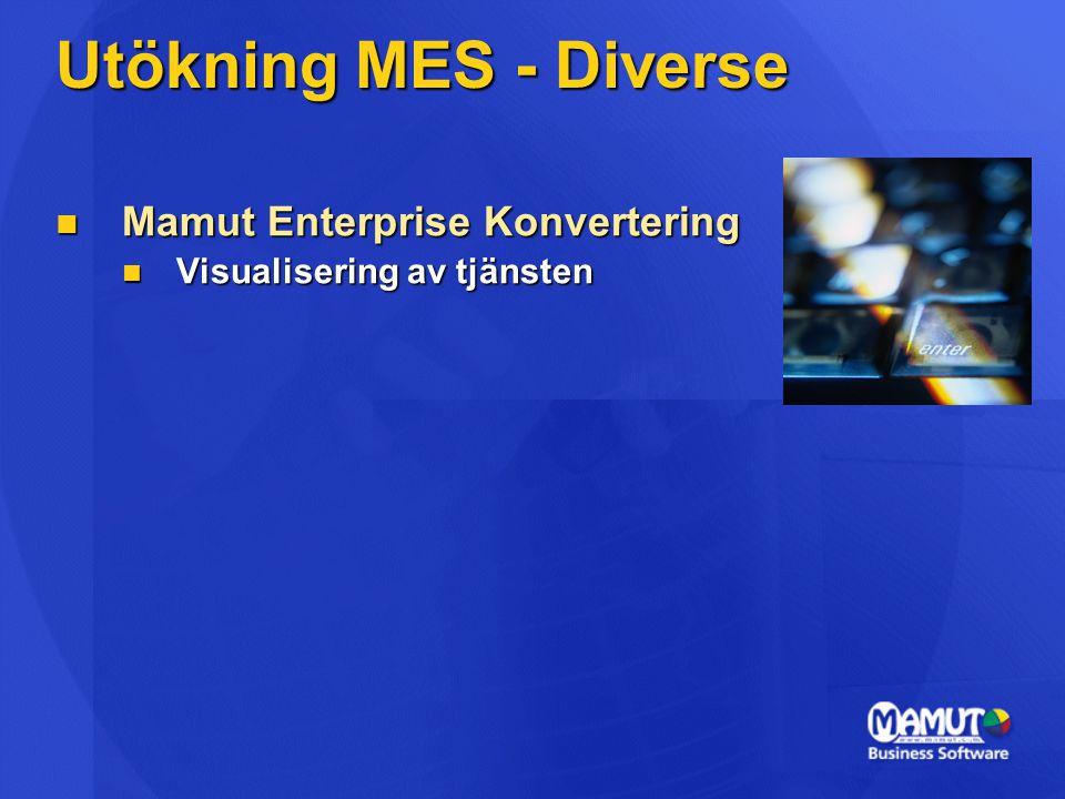Utökning MES - Diverse Mamut Enterprise Konvertering Mamut Enterprise Konvertering Visualisering av tjänsten Visualisering av tjänsten